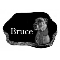 The Bruce (3 Sizes and 2 Colors)