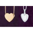 View: Heart Shaped Pendant Collection