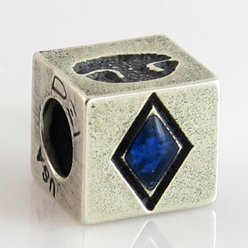 Phoenix Buddies Cube Bead Pet Print Charm