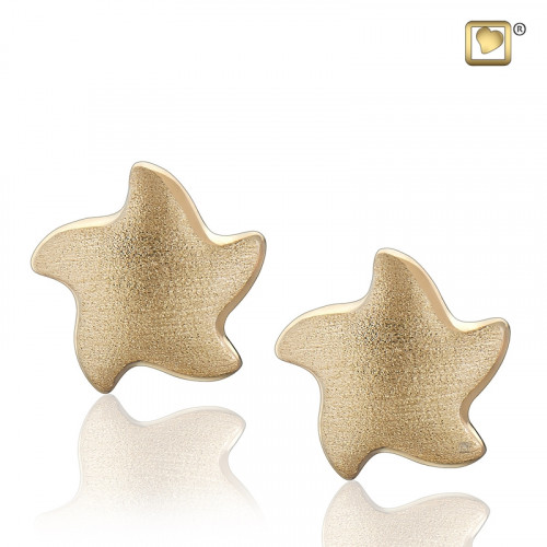 Gold Angelic Star Two Tone Stud Earrings