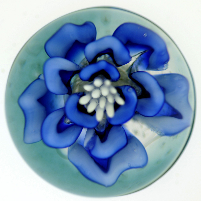 Blue flower life orb cremation solutions blue flower life orb mightylinksfo