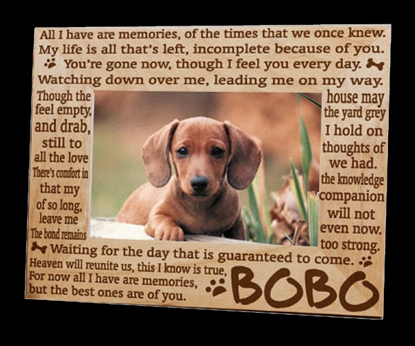 Pet Memory Frame | Cremation Solutions