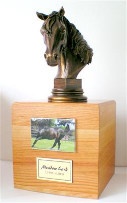 Horse Cremation Urn Ashes