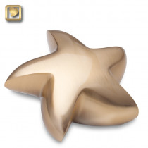 Brushed Gold Star Cremation Urn for Ashes