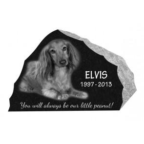 The Elvis