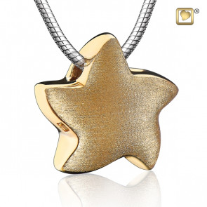 Gold Angelic Star Two Tone Cremation Pendant