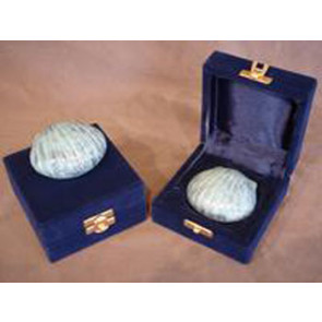 The Shell Keepsake Urn