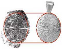 Fingerprint Example